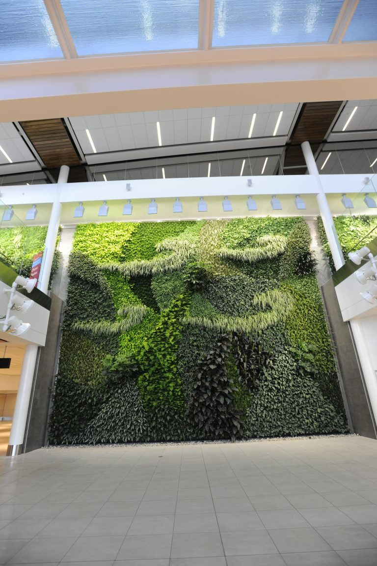 EIA Living Wall Artwork as seen in arrivals corridor
