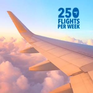 250 Current Flights Square