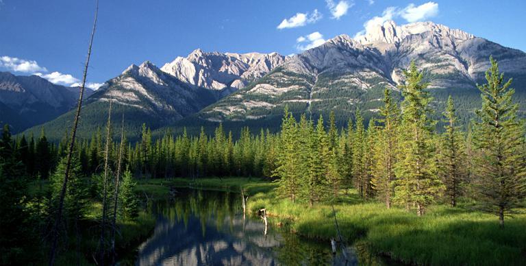Photo montrant des vues panoramiques du parc national Jasper (montagnes, arbres et lac)