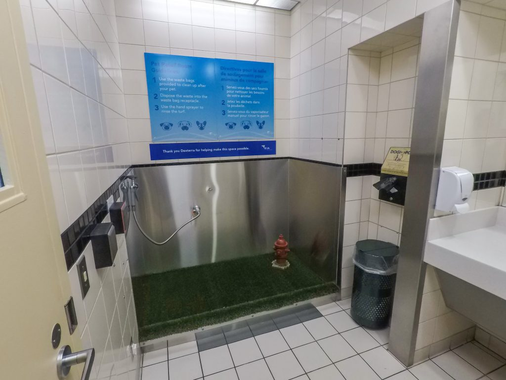 Pet Relief Room, interior